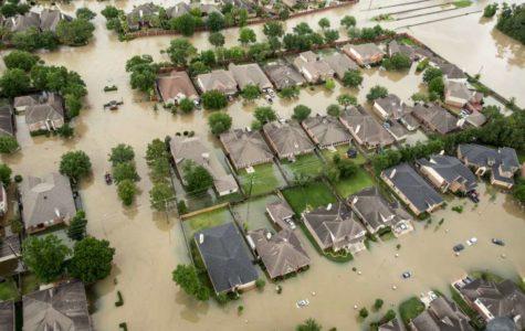 A Tragedy in Houston, 2017