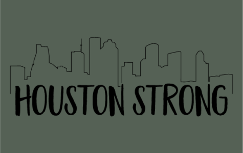 #Houstonstrong, A Concept