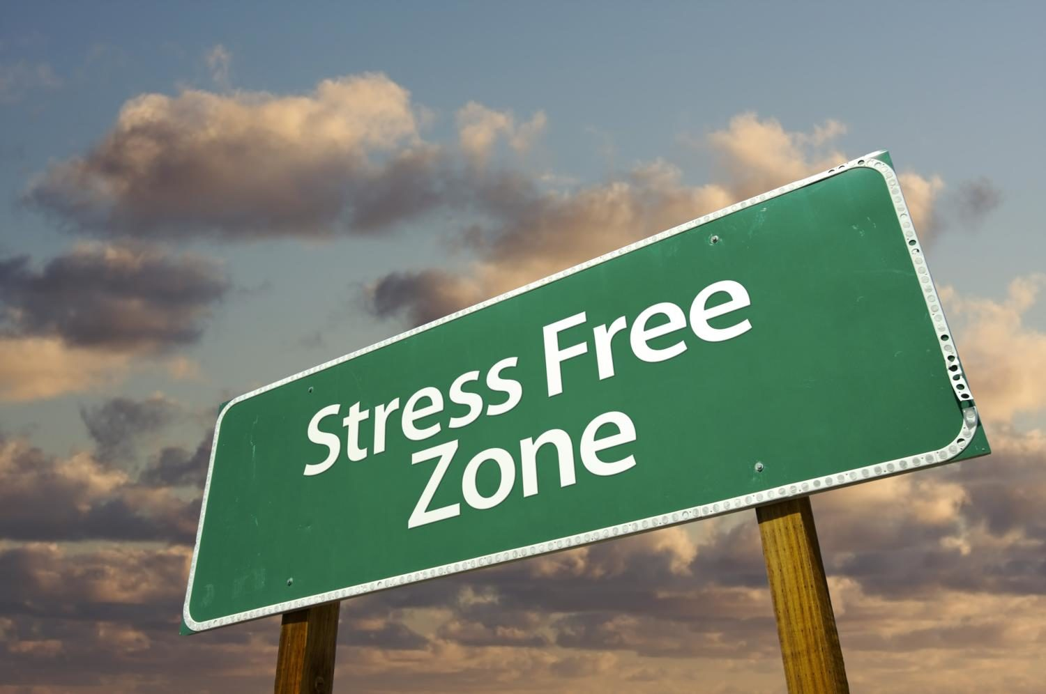How+to+Live+Stress+Free+%3A%29