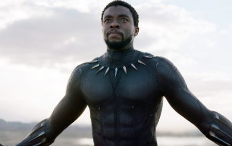 BLACK PANTHER, Chadwick Boseman, 2018. © Marvel / © Walt Disney Studios Motion Pictures /Courtesy Everett Collection